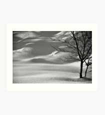 Snowscape-A Look Beyond the Ice Art Print