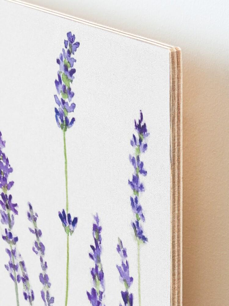 Alternate view of purple lavender  Mounted Print