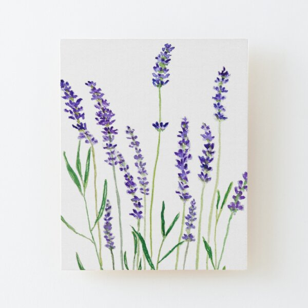 purple lavender  Wood Mounted Print