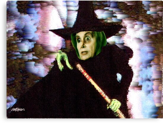 The New Wicked Witch of the West by Seth  Weaver