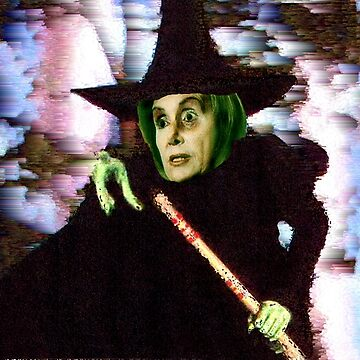 The New Wicked Witch of the West by sethweaver