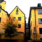 Autumn in Stockholm by OharaObama