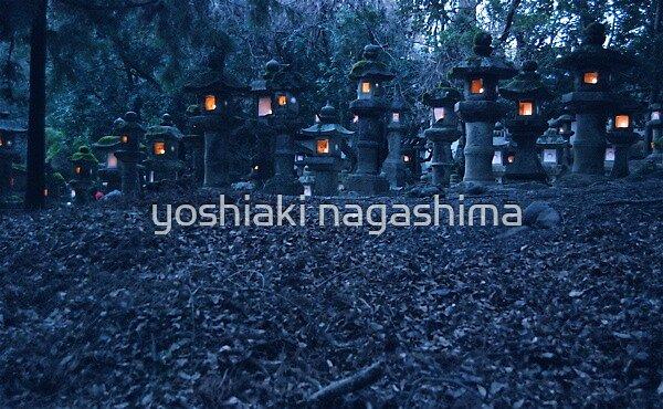 Japanese Mystery Light , JAPAN   NARA by yoshiaki nagashima