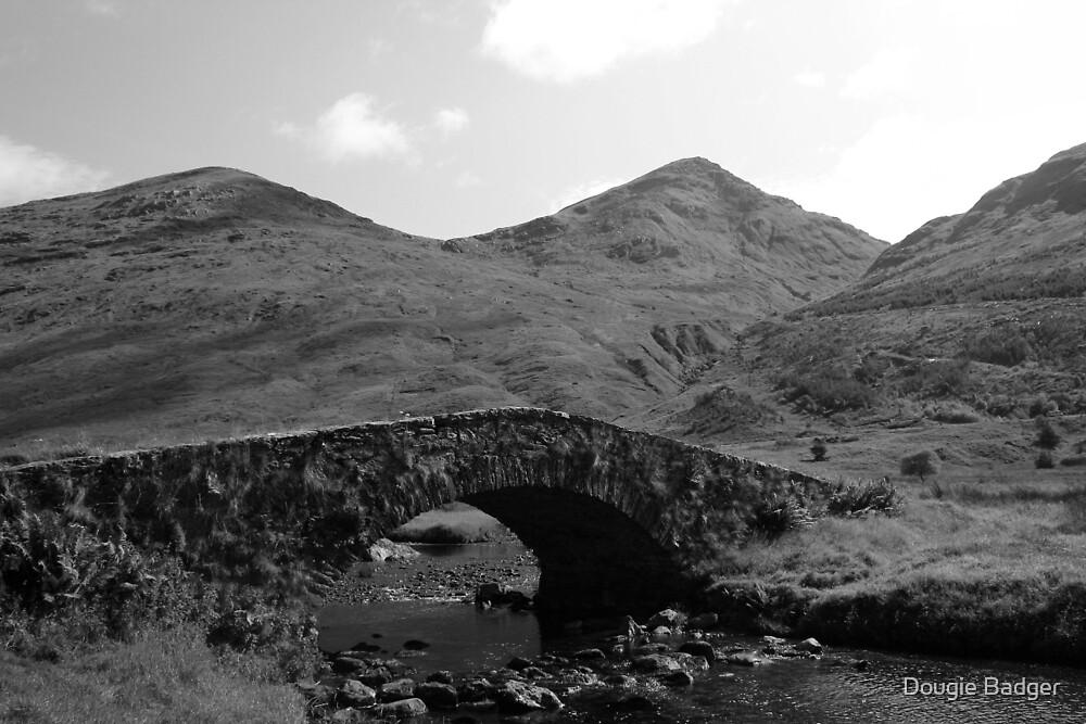 Butter Bridge Kinglas Argyle and Bute 1 by Dougie Badger