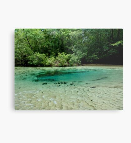 Williford Spring Metal Print