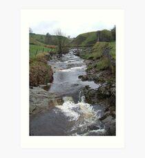 weardale river wear Art Print