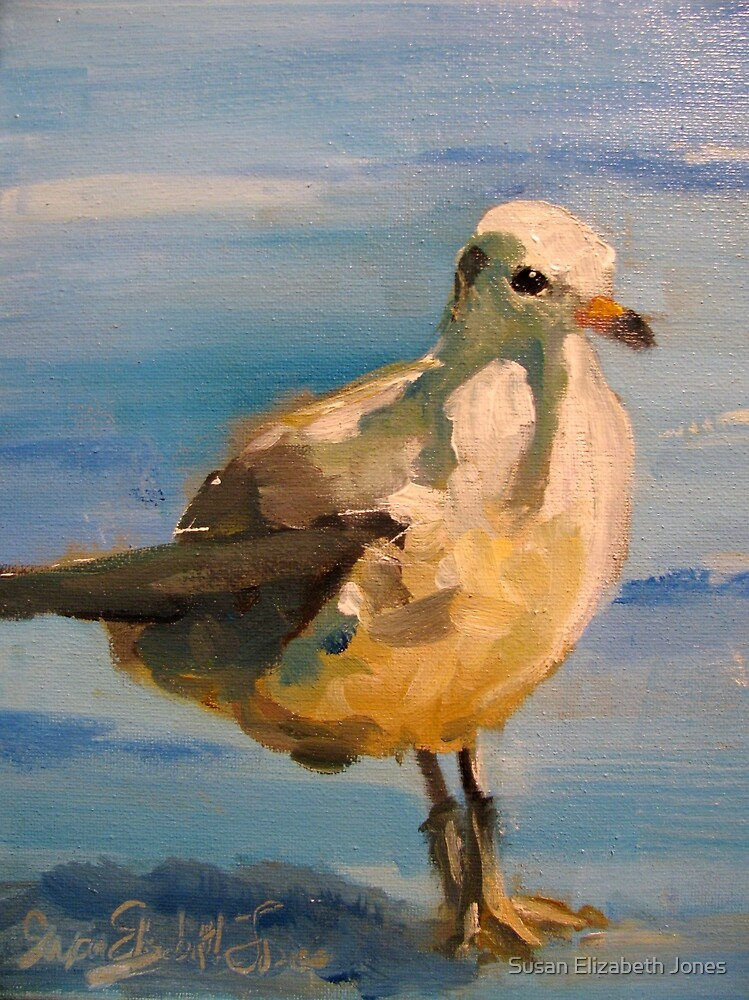 Gull by Susan Elizabeth Jones