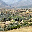 Naxos Demetrius Temple Lanscape by Martin  Hazelgrave