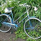 Ladies Bicycle in Flowers by njwilken
