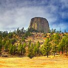 Devils Tower by Bruce Taylor