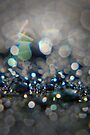 glittering prize by Anthony Mancuso