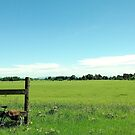 Cycling on Sauvie Island, Oregon by njwilken