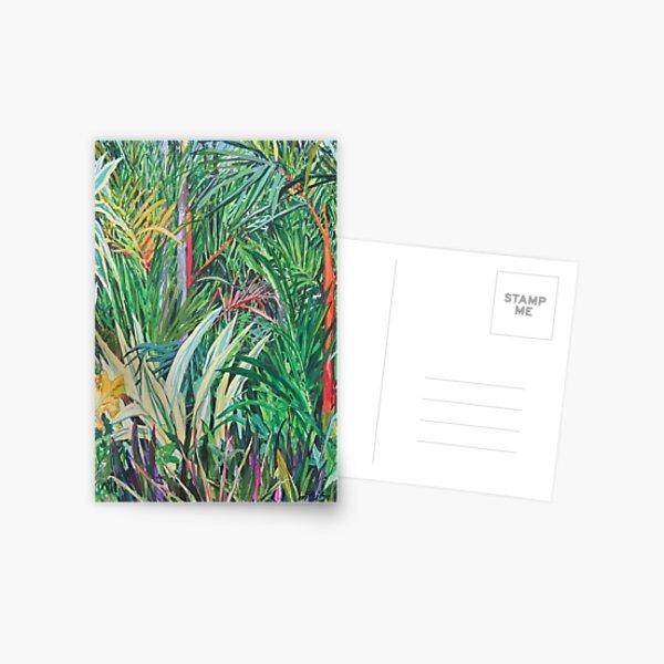 Darwin garden Postcard