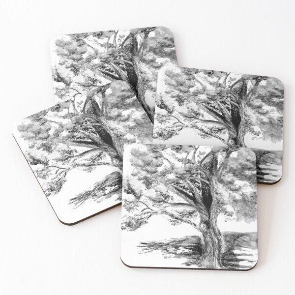 Old Maple Tree Coasters (Set of 4)