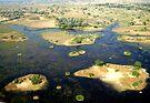 Aerial of Okavango Delta, Botswana, Africa (10) by Margaret  Hyde