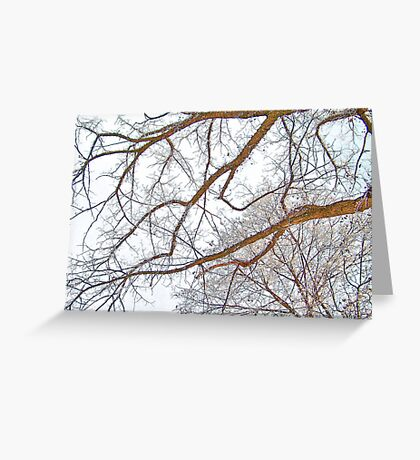 Winter Lace Greeting Card