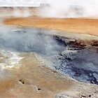 Icelandic Thermal area (4) by Margaret  Hyde