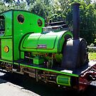 Temporary Thomas? It's not easy when you're green by TonyCrehan