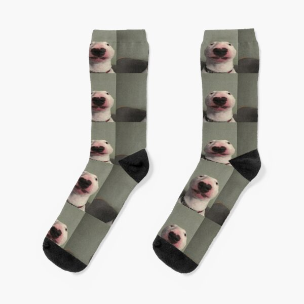 Walter The Dog Socks