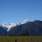 fox glacier and the southern alps by samantha jefferson