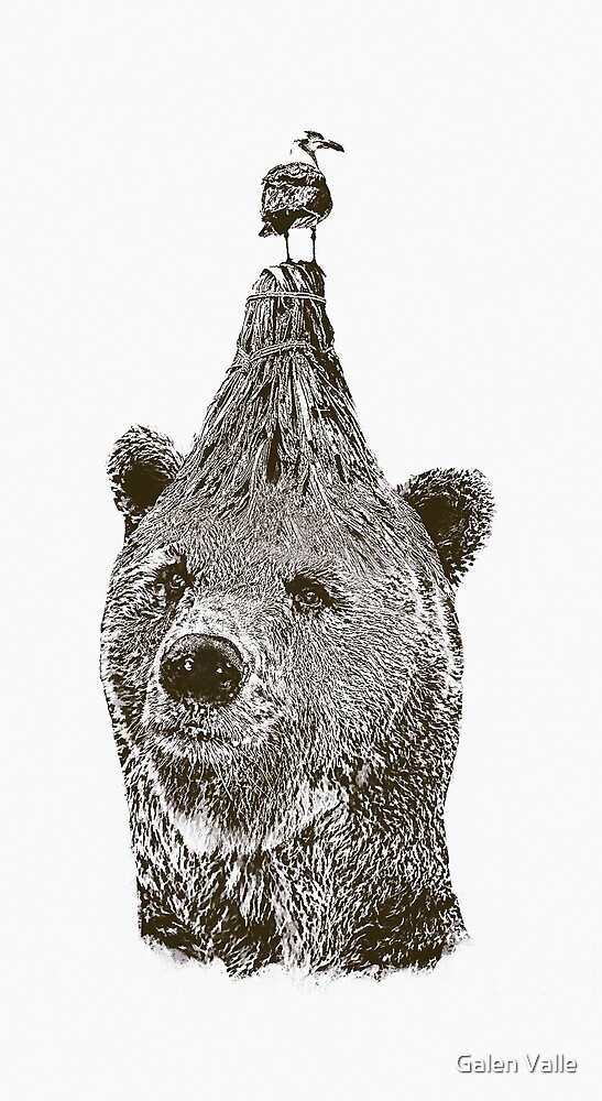 bear by Galen Valle