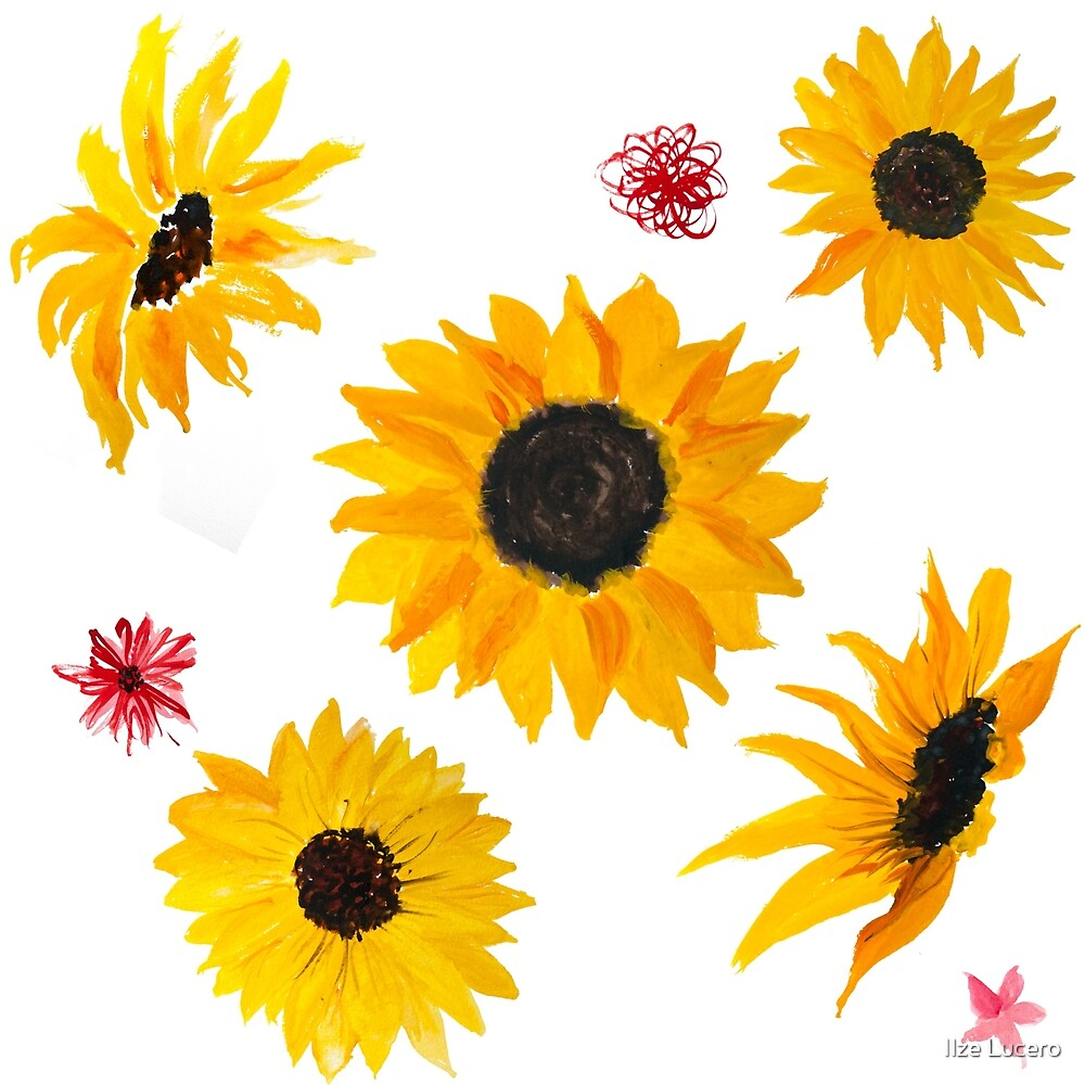 Sunflowers by Ilze Lucero