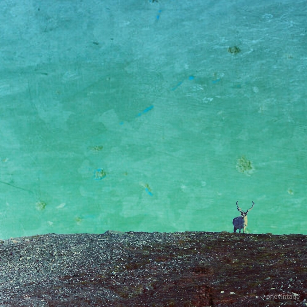 Reindeer in aqua by onevintage