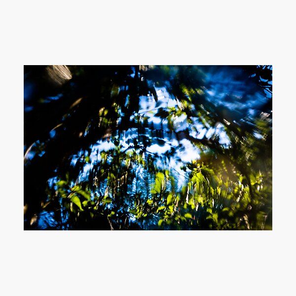 Distorted Leaves Photographic Print