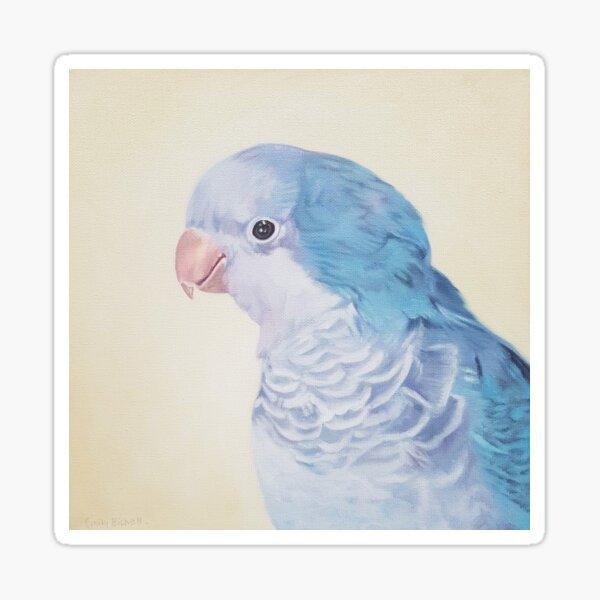 Blue Quaker - pet bird portrait painting Sticker