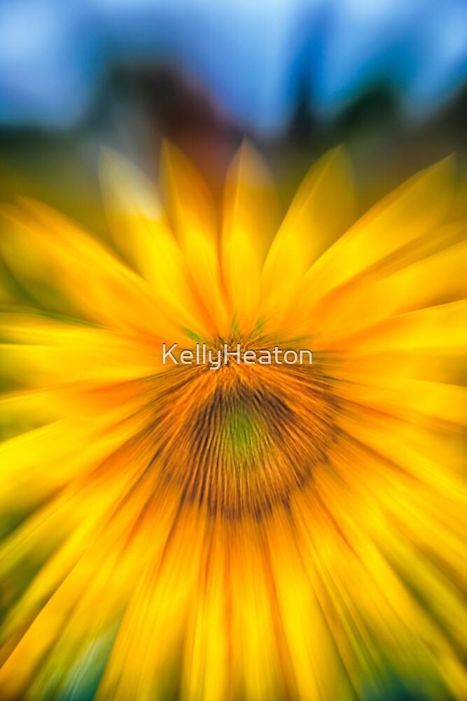 Sunflower Zoom by KellyHeaton