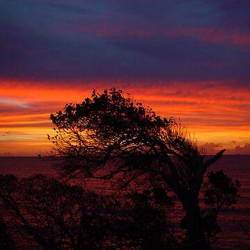 Sunset Grenada 2002 by miodrag