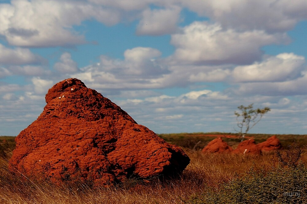 Termite Mounds out the back of beyond by myraj