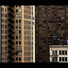 Chicago Loop View by Matt Becker