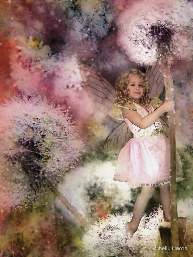 Magic In The Dandelion Fuzz by Shelly Harris