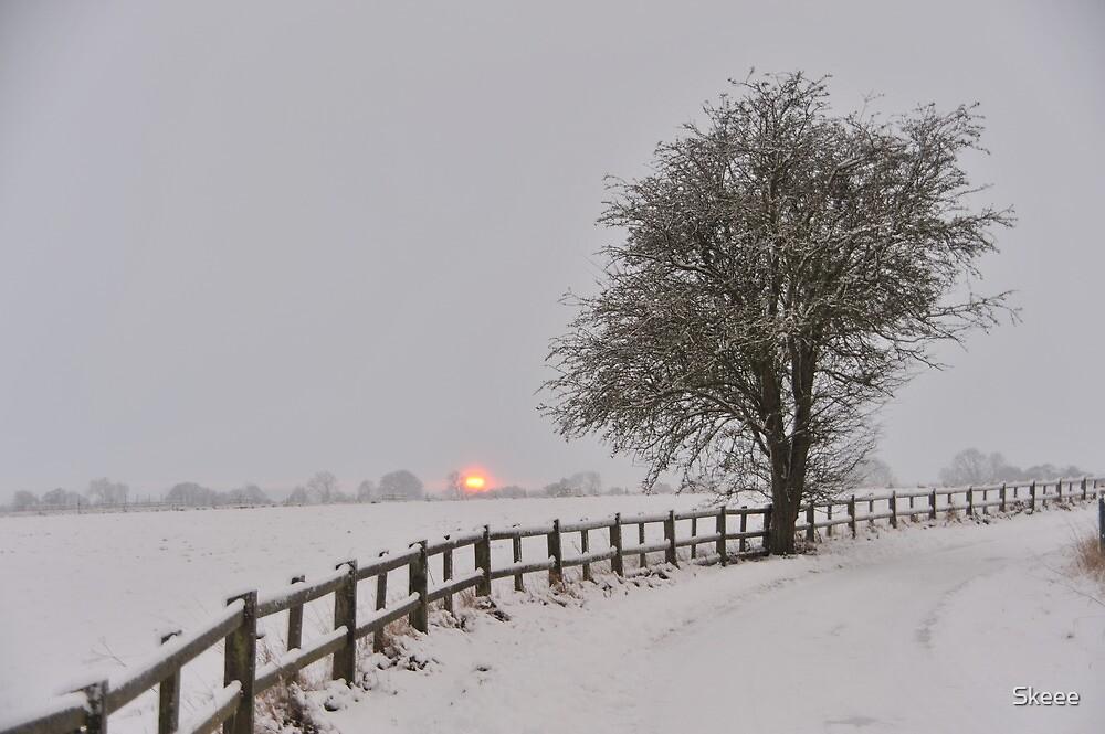 Winter Sunset by Skeee