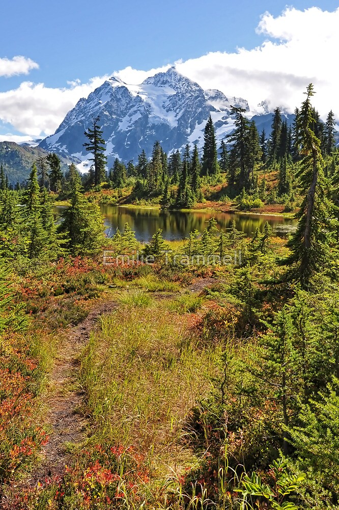 Autumn at Mt. Shuksan by Emilie Trammell