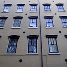 Windows by Paul Rees-Jones
