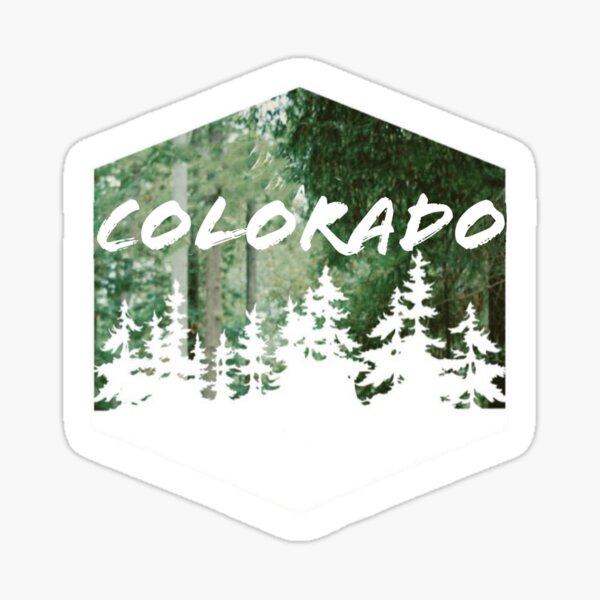 Colorado Rocky Mountains, Pine Trees  Sticker