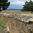 Stone Wall by DEB CAMERON