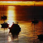 Gold Ripples - Eastern Beach Geelong by Deb Gibbons
