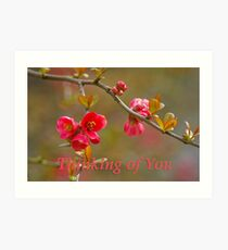 quince 'thinking of you' Art Print