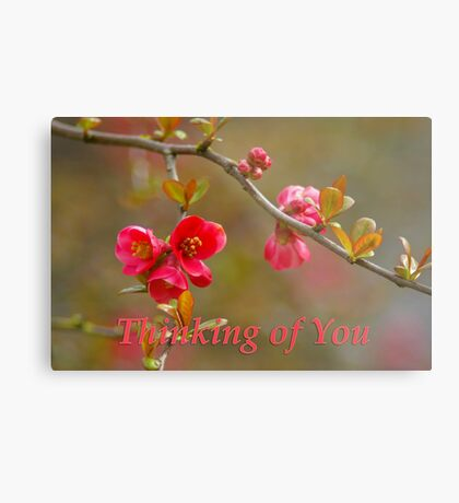 quince 'thinking of you' Metal Print