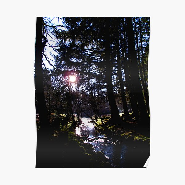Winter afternoon at Kenick Burn Poster