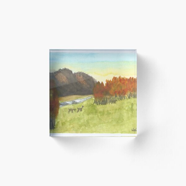 Inktober 2019 #16: Wild Acrylic Block