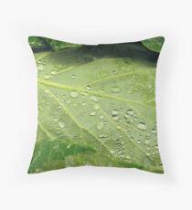 Lettuce Entertain You Throw Pillow