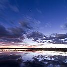 Sunset and Star Light at the Bosque by Mitchell Tillison