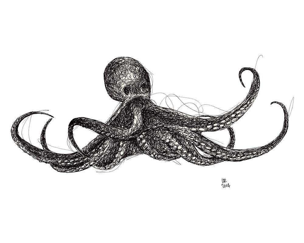 Octopus by UrsulaRodgers