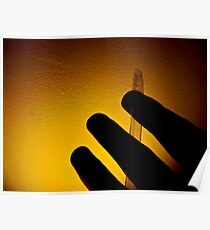 Like cellophane in my hand Poster