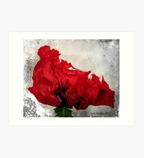 Red....Very Red! Art Print