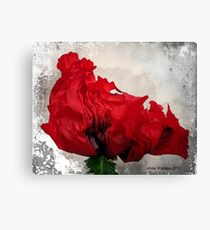 Red....Very Red! Canvas Print